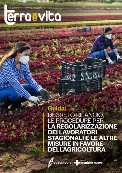 Regolarizzazione dei lavoratori